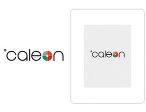Unternehmens-Logo-Anzeige im Display bei Reglerstart und vor Standby